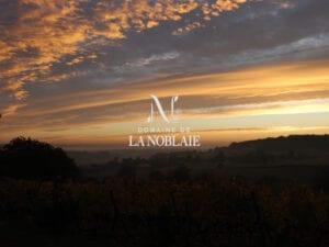 Domaine la Noblaie - Cave Pierre Noble