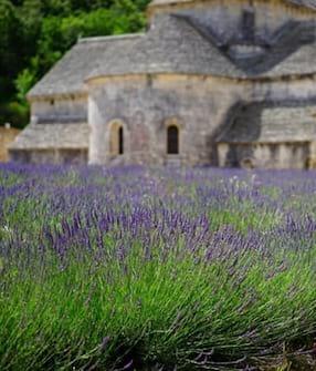 Provence/Corse