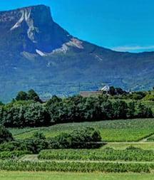 Savoie & Bugey